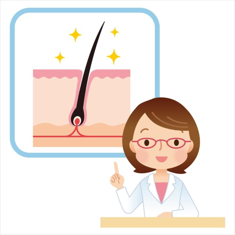 抜け毛が起こるメカニズムを知れば、抜け毛対策ができる