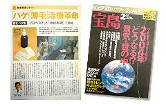 200402月刊 宝島